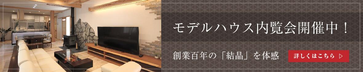 banner_1180x236