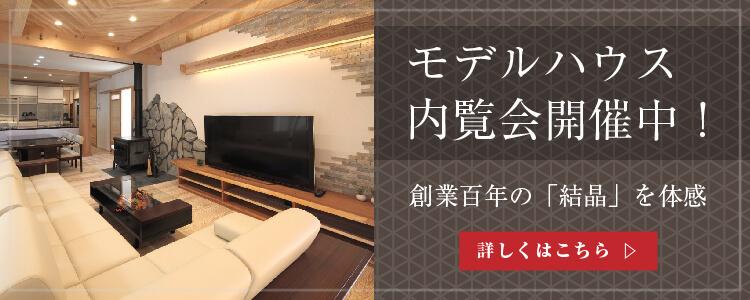 banner_750x300